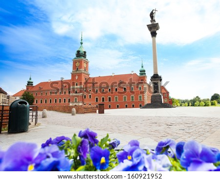Royal castle, monument column and blue flowers in flowerbed in Warsaw,  capital city of Poland - stock photo