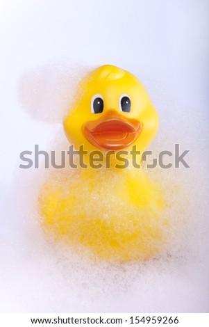 Rubber duck in the bath tub - stock photo