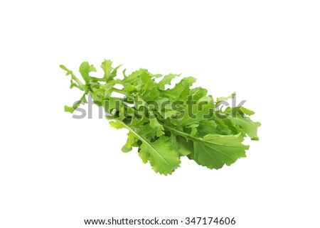 Rucola isolated on white background - stock photo