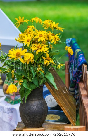 Rudbeckia is a plant genus in sunflower family. Species are commonly called coneflowers and black-eyed-susans. - stock photo