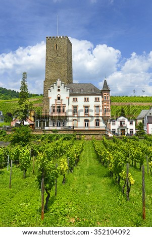 RUDESHEIM AM RHEIN, GERMANY - JUNE 26, 2015:  Boosenburg Castle, Tower 12th century and Residence Neo-Gothic style in the Rhine Valley. Rhine Valley is UNESCO World Heritage Site