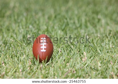 rugby ball in the field