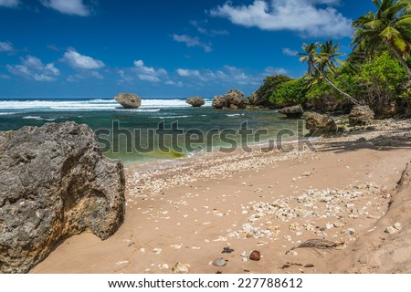 Rugged beach with distinctive eroded rocks at the town of Bathsheba on the Atlantic east coast of the Caribbean island of Barbados in the West Indies. - stock photo