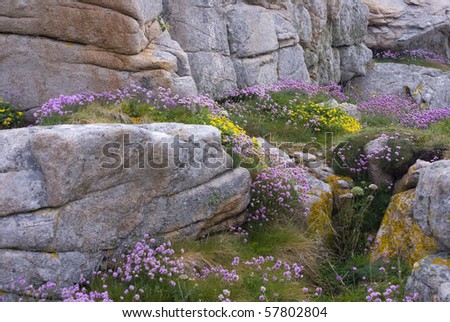 Rugged coastline and rocks . northern brittany ,france