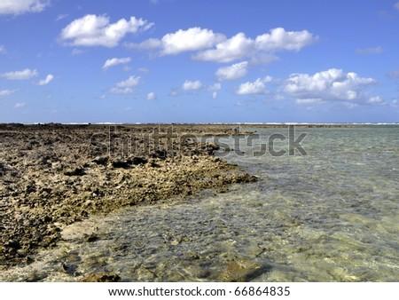 rugged shoreline on Lady Elliot Island, Great barrier Reef Australia - stock photo