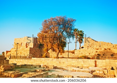 Ruined of ancient city Caesarea in Israel - stock photo