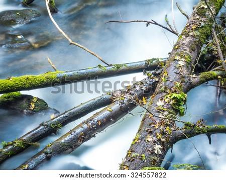 Running creek - stock photo