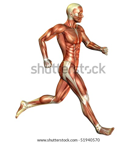 running muscle man - stock photo