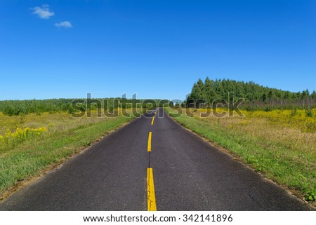 Rural asphalt road with markings that goes into the woods and passing through the meadow. Blue sky on a sunny summer day - stock photo