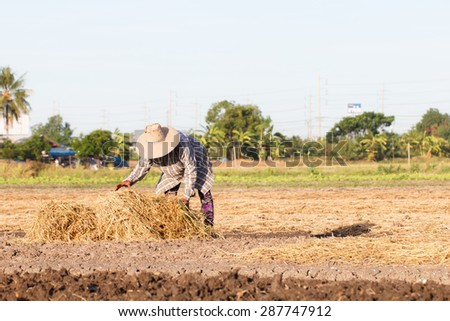Rural farmer with haystack prepare for agriculture-7 - stock photo