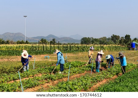 Rural farmers working on the field with mountain and sky background - stock photo