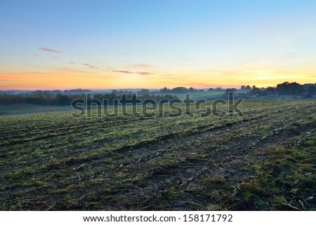 Rural field at the sunrise in fog - stock photo