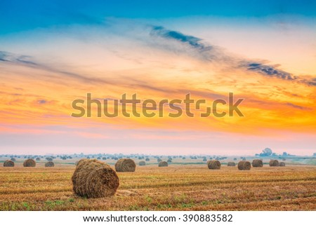 Rural Field Meadow With Hay Bales After Harvest in Sunny Day in Summer. Sunrise Time. Colorful Sunset Dramatic Sky. - stock photo