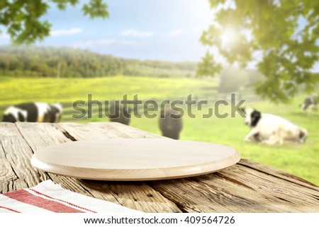 rural green landscape of farm and white and black cows  - stock photo