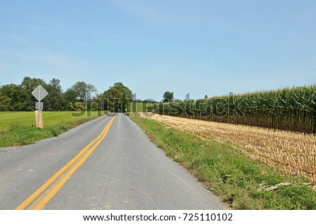 Rural highway through Lancaster County, PA, lined by a field of corn