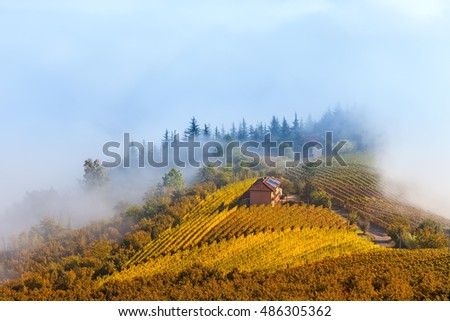 Rural house among autumnal vineyards on the hill on foggy morning in Piedmont, Northern Italy.