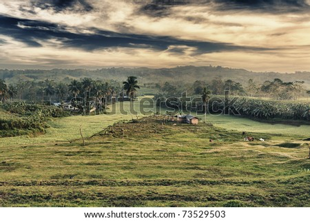 Rural landscape at sunset time. Bohol. Philippines - stock photo