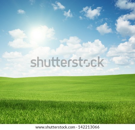 Rural landscape, empty green field with copy space - stock photo