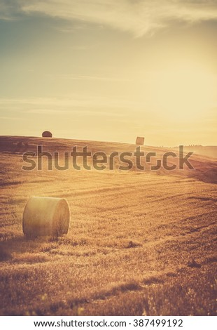 Rural landscape in Tuscany with golden sunset in the background.