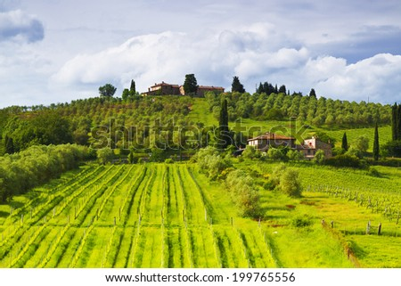 Rural landscape of Tuscany. Italy - stock photo