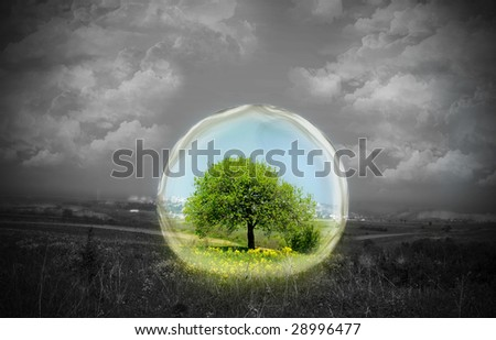 Rural landscape shot with a tree and flowers in the center of the shot in color and surrounded by glass. The remainder of the photo is in black and white. Conceptual. - stock photo