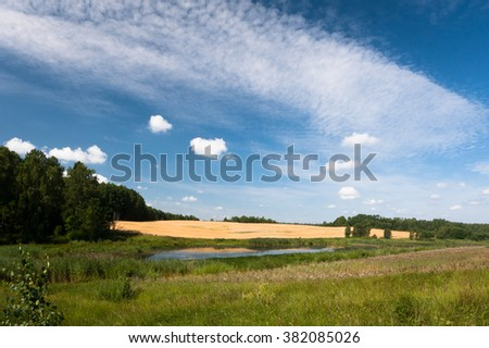 rural landscape with a pond