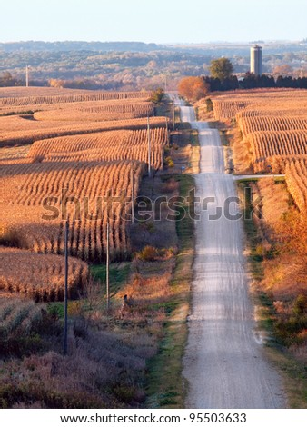 Rural landscape with corn fields, rolling hills, and a gravel road (vertical) - stock photo