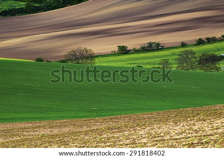 Rural landscape with fields and trees, South Moravia, Czech Republic, natural abstract geometric background - stock photo
