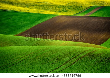 Rural landscape with green fields and waves, abstract natural background with yellow rapeseed plants - stock photo