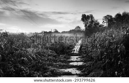 Rural landscape with meadow at dawn. Morning mist. Black and white photo - stock photo