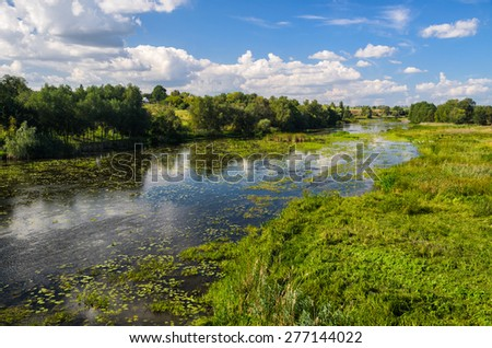 Rural landscape with river and water lilies and lots of shore grass - stock photo