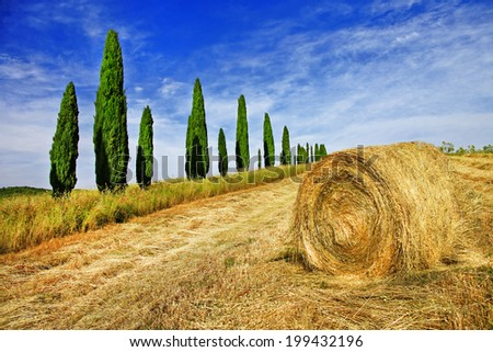 rural landscapes of beautiful Tuscany, Italy - stock photo