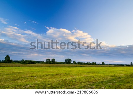 Rural meadow - stock photo