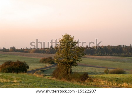 rural meadows in golden morning glow - stock photo