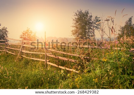 Rural nature at sunset. Beautiful summer landscape with field and forest. Creative vintage filter, retro effect - stock photo