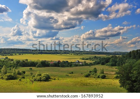Rural nature landscape with beautiful grass and trees - stock photo