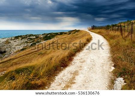 Rural Pathway along the coast at sea