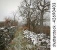 Rural pathway during winter season - stock photo