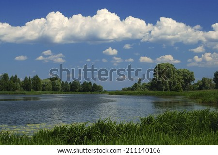 Rural pond, reeded and with water-lilies, under dark blue sky with white clouds. - stock photo