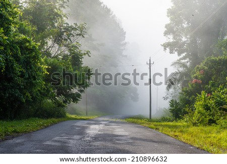 Rural road among the Cuban mountains, exhuberant vegetation scenery with heavy fog despite being late in the morning. - stock photo