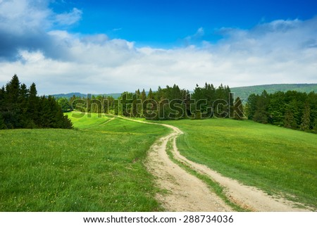 Rural road and green field in Beskidy Mountains in summer, Poland
