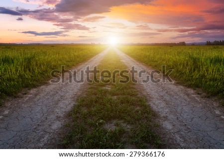 rural road and pink sunset - stock photo