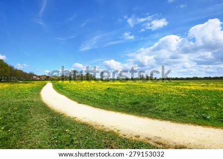 Rural road in dandelion filed in the Netherlands