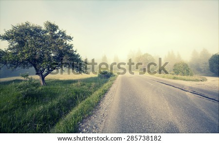 Rural road in morning fog in the summer - vintage photo - stock photo