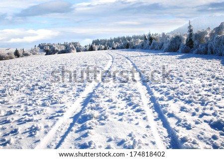 Rural road in snow. Winter country landscape.