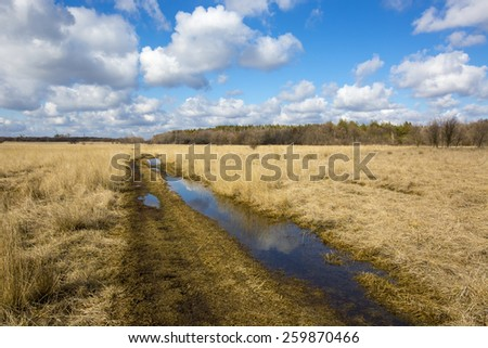 rural road in steppe at nice spring day - stock photo