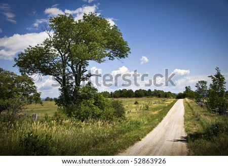 Rural Road In Summer - stock photo