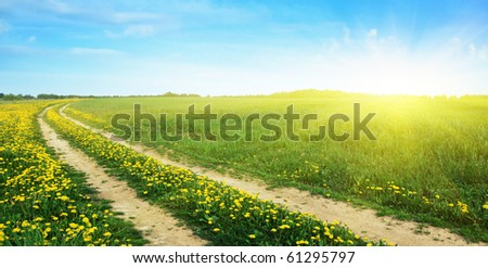 Rural road in the field and sun. - stock photo