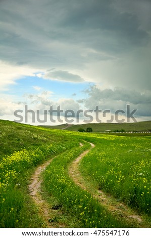 Rural road on green field.