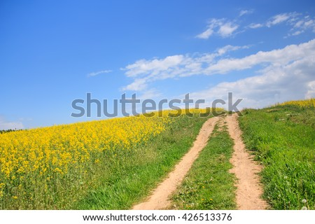 Rural road through a field of rapeseed and blue sky landscape - stock photo